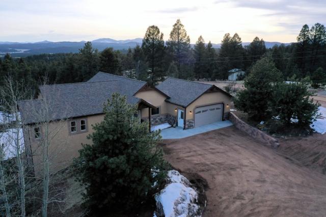 Aerial Photography Colorado Florissant March 26 2019